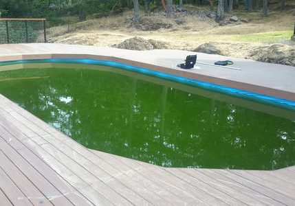 all season pool cleanup